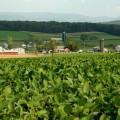 préstamo agricola
