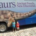 El Museo Americano de Historia Natural en Nueva York(+Fotos)