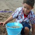 Diversión:Un Simple Día de Playa con los Niños