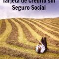 Como Solicitar una Tarjeta de Crédito sin Número de Seguro Social